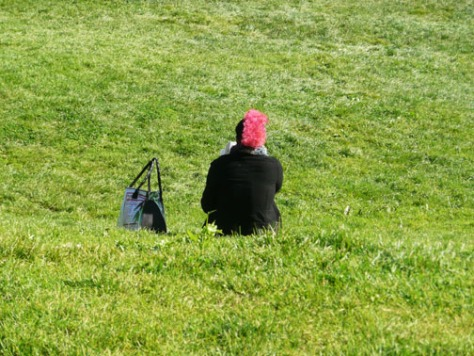 Person with pink mohawk surrounded by grass in Dolores Park