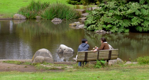 Couple eating lunch on park bench next to Stow Lake with turtles on rocks